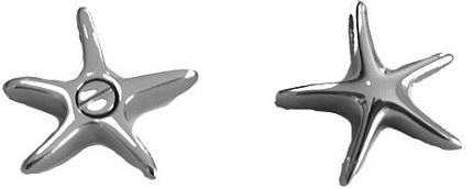 zeester-ashanger-gedenksieraad-kopen