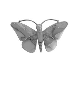 assieraad vlinder te koop