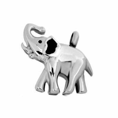 olifant ashanger te koop